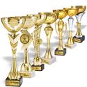 Trofee Top 10k - Firme Romanesti